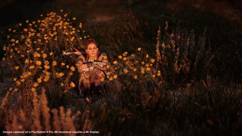 hzd_screens_photomodeupdate_05 | by PlayStation.Blog