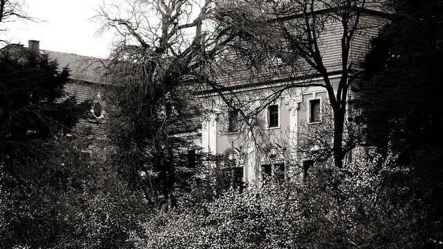 Pałac Pieszyce ( monochrome )