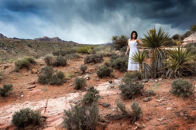 Rain for the desert