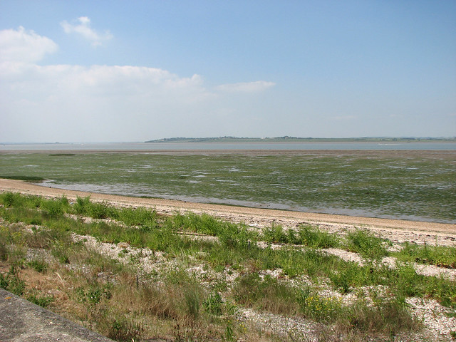 The Isle of Sheppey from The Saxon Shore Way