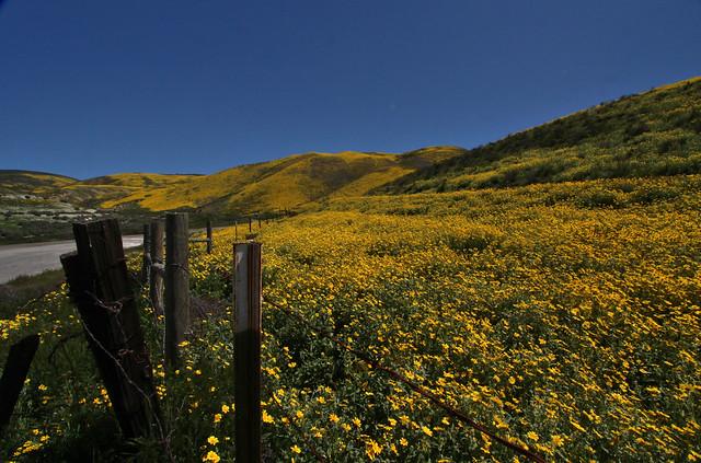 Tremblor Range, Carrizo Plain NM