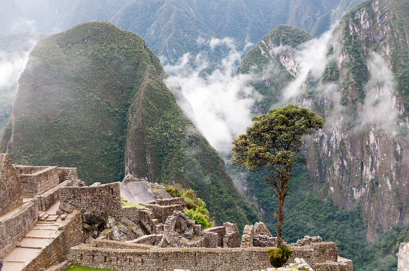 Machu Picchu_080_20170428_DSC_6349.jpg