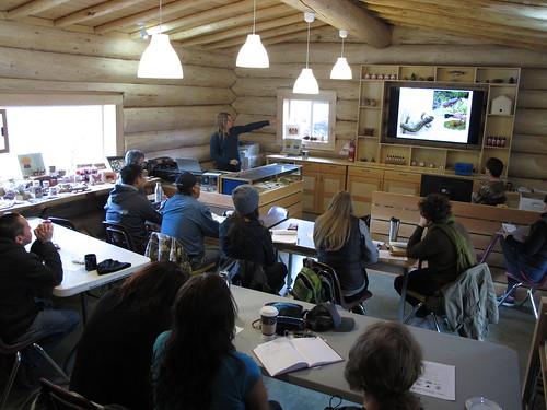 Elke Wind presents of amphibian wetland design considerations | by BC Wildlife Federation's WEP
