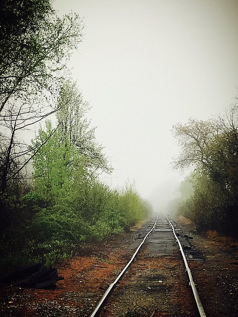 Forgotten track to foggy unknown