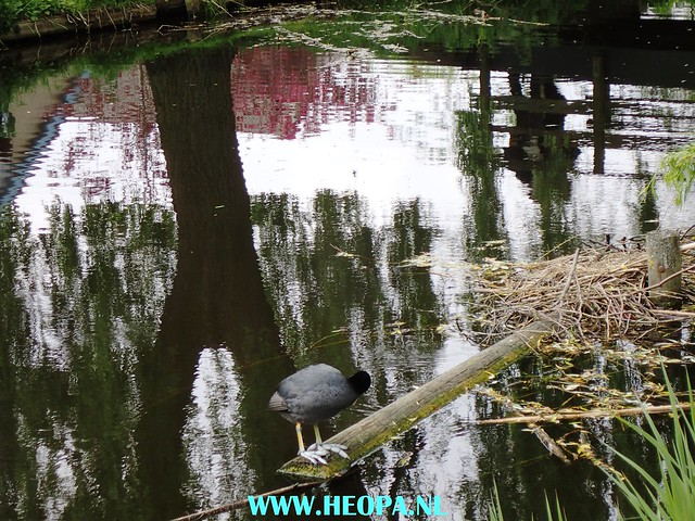 2017-05-03  Uithoorn 25 km (136)