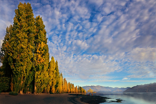 earlyautumnvistas lakewanaka wanakatree wanaka otago southisland newzealand nz autumn canon5dmarkiii ef1635mmf28liiusm travel bluesky cloud lifeng