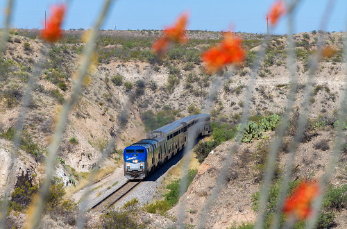 amtrak sunsetlimited amtraksunsetlimited amtrak199 ge generalelectric desert blooming ocotillocactus ocotillo cactus vail arizona vailarizona up unionpacific gep42 p42 amt199