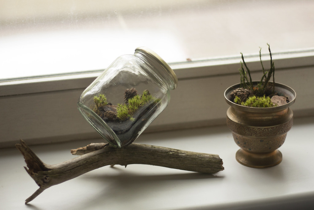 Diy Closed Terrarium You See Them Very Often These Days C Flickr