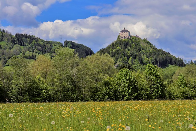 Castle Strechau Spring