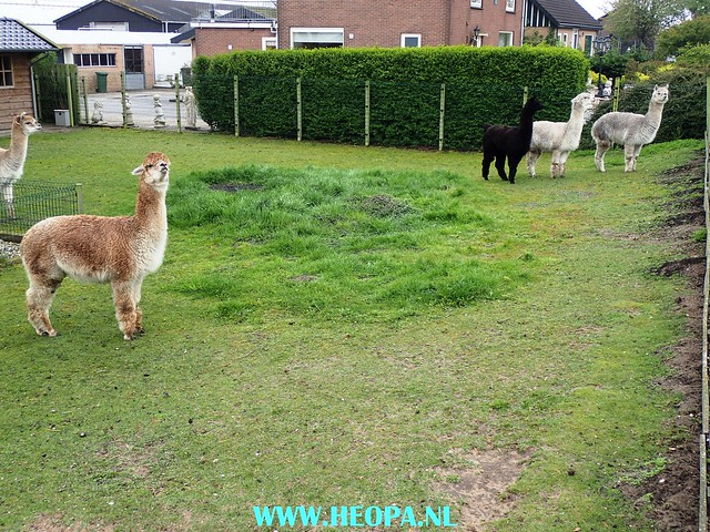 2017-05-03  Uithoorn 25 km (61)