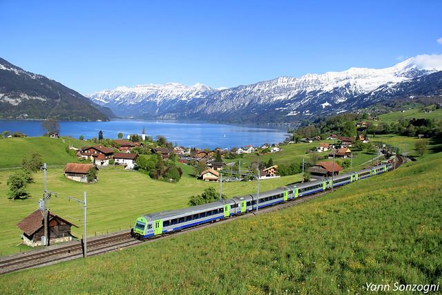 Quand les couleurs du train se marient parfaitement à celles du paysage