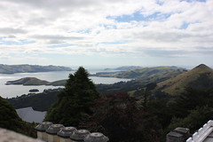 View from Larnach Castle