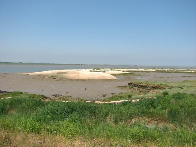 The Saxon Shore Way at Graveney Marshes