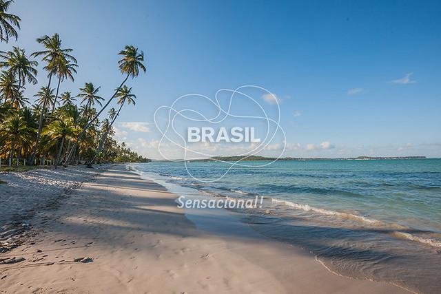 NE_PraiadosCarneiros0015