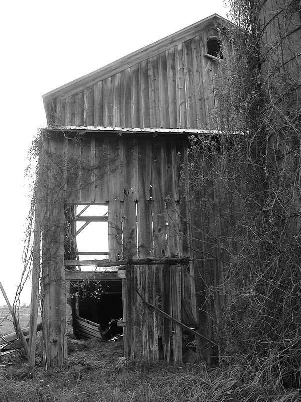 Decrepit barn with hairy silo