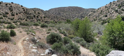 0898 Panorama shot as the canyon opens up near PCT campsite WRCS0230 | by _JFR_