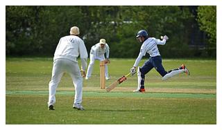 Cricket 13   by fransmartens667