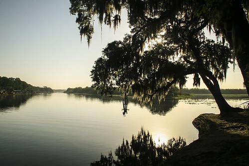 water florida hontoonisland sunrise reflection goldhour