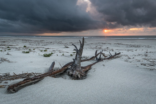 weather cumberlandisland georgia sunrise travel beach clouds driftwood sand storm sun chuckpalmer outdoor views