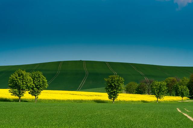 blue green & yellow