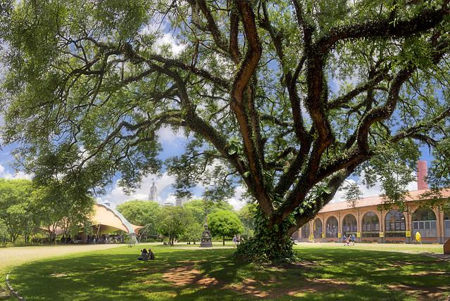 Parque Dom Pedro II - São Paulo