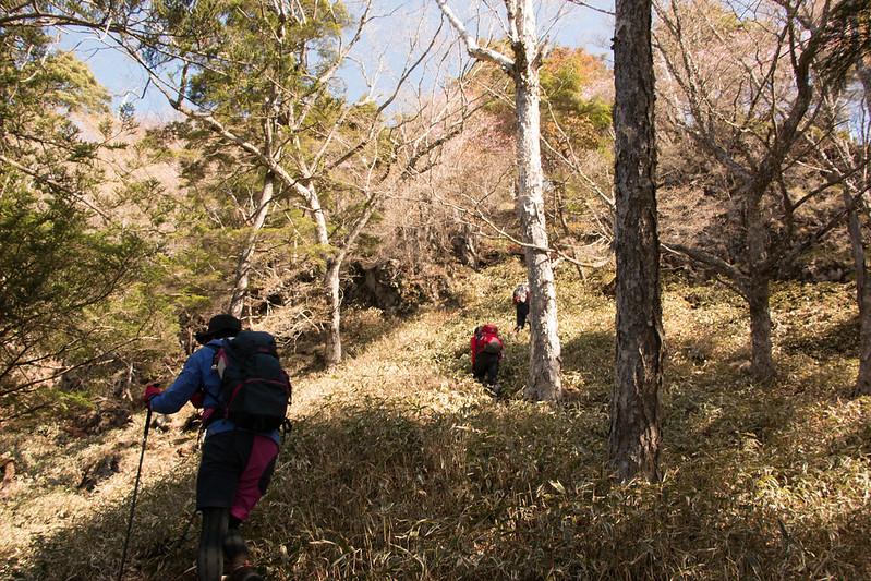 20150510-皇海山-0182.jpg