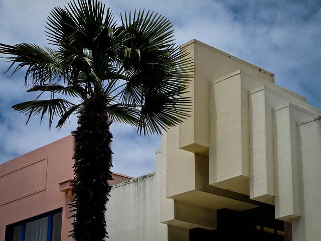 Napier, a tree and its building
