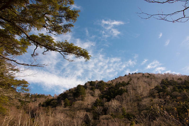20150510-皇海山-0178.jpg