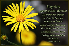 Singt Gott / Sing to God