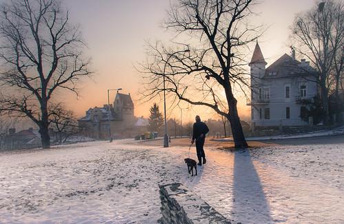 prague praha winter snow walk dog medieval trees light sunset goldenhour czech petrin flickrtravelaward