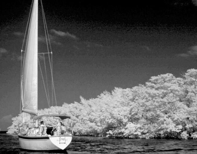 sailing key largo