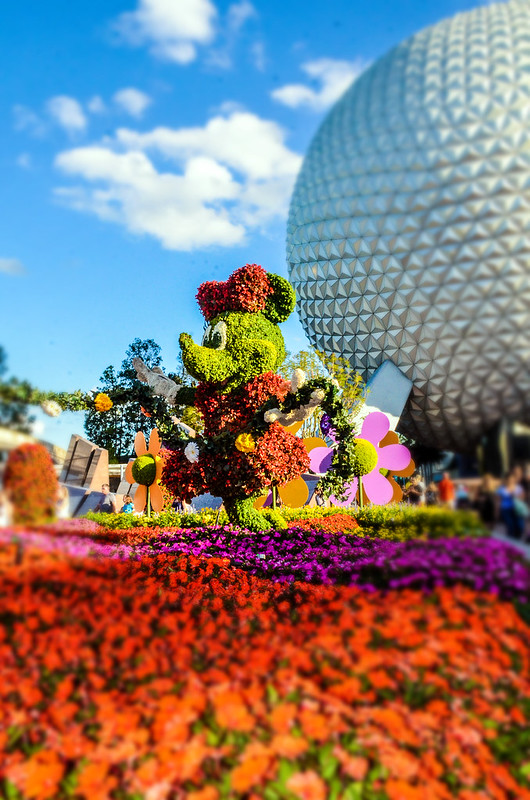 Minnie topiary blur epcot