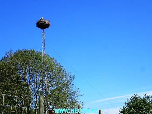 2017-05-06       Wageningen        40 km  (77)