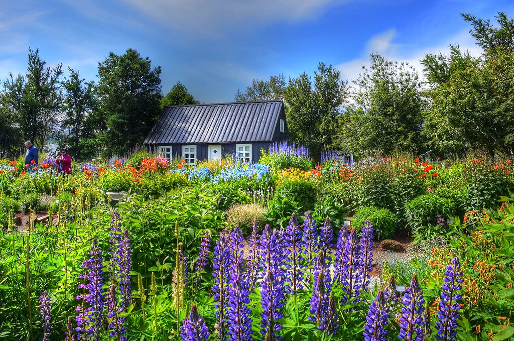 Black house in a bed of Flowers