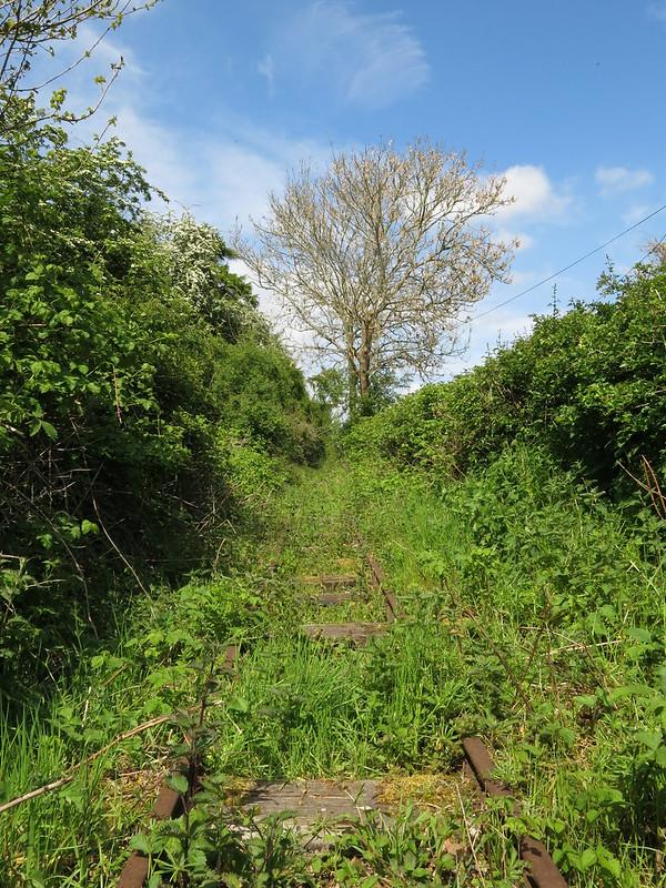 Nature Subsuming Railway