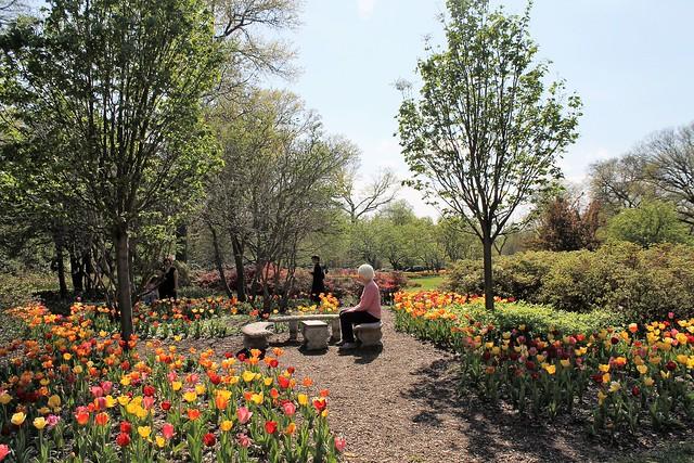 Sherwood Gardens