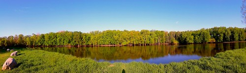 rivers michigan usa spring may 2017 panorama android rosellepark trees sky woodland water creativecommons