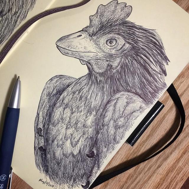 Respect to the mighty Chickenosaurus. Inspired by Dr. Jack Horner's dinosaur chicken project.  #paleoart #jackhorner #paleontology #chickenosaurus #dinosaur #theropod #geneticengineering #jurassicpark #jurassicworld #cloning #genetics #naturalhistory #evo