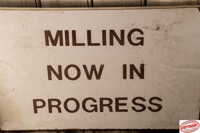 IMG_1365 Tocketts Mill -1