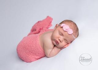 pretty in pink | Boston baby portraits