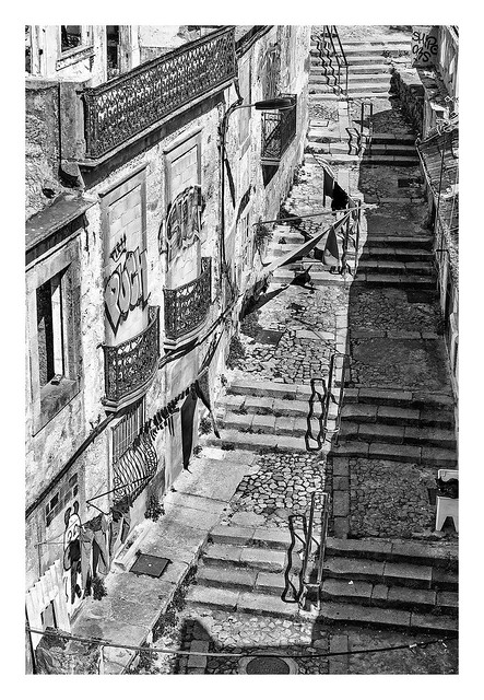 ESCADAS DO CODECAL  ( Oporto Portugal )