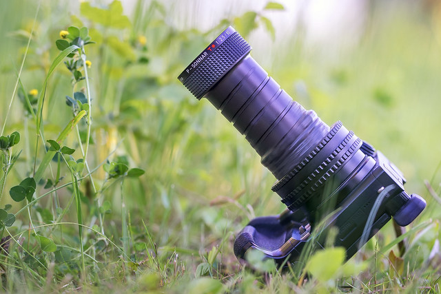 ZEISS in nature :-)