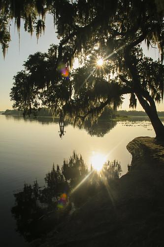 water florida hontoonisland sunrise sun reflection tree