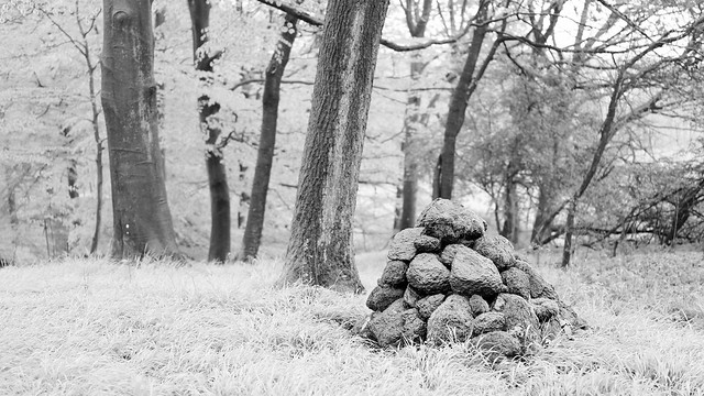Cairn in the Forest