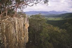 Climbing Point Pure