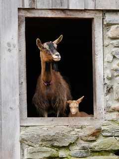 Mother and son, reprise | by grongar