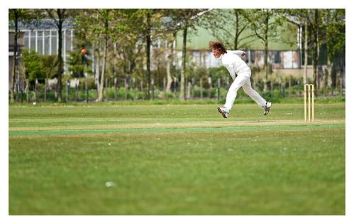 Cricket 9 | by fransmartens667