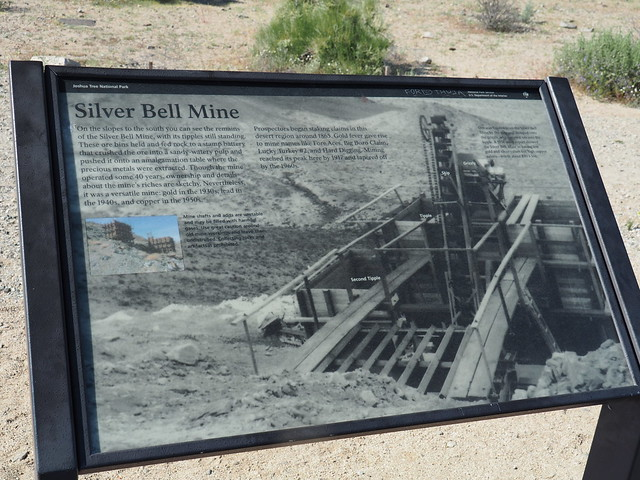 Q3266944 Joshua Tree National Park Wilson Canyon Silver Bell mine sign