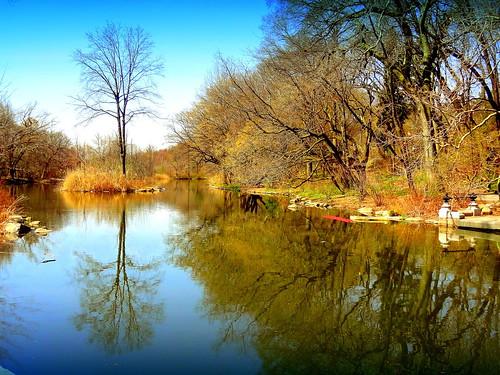 newyork brooklyn dmitriyfomenko image spring sky prospectpark reflection trees