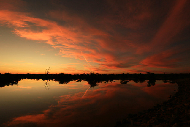 Sunset at Madikwe game reserve - South Africa